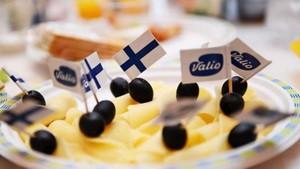 Доставка из Финляндии любых грузов