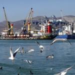 С начала 2016 года грузооборот морских портов России вырос на 4,6%