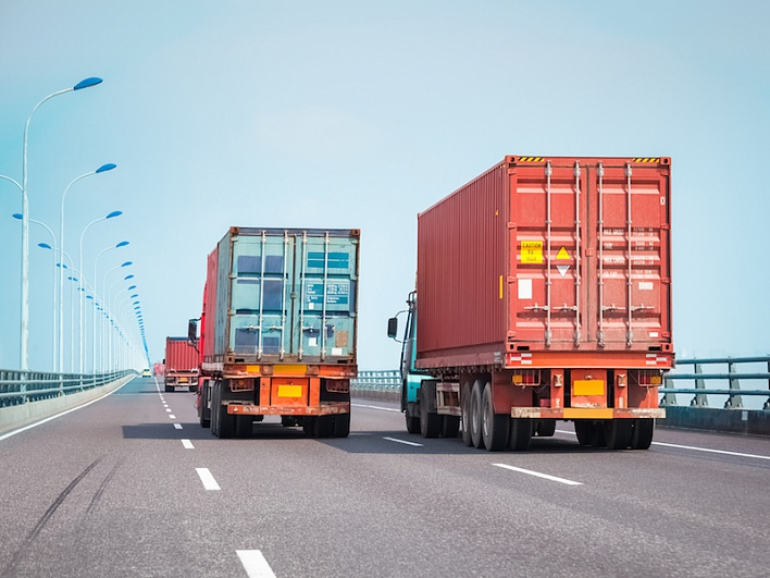 грузовые перевозки и таможенное оформление Лис существовал