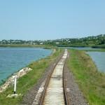 Молдавская железная дорога за 10 месяцев снизила грузоперевозки на 11,6%